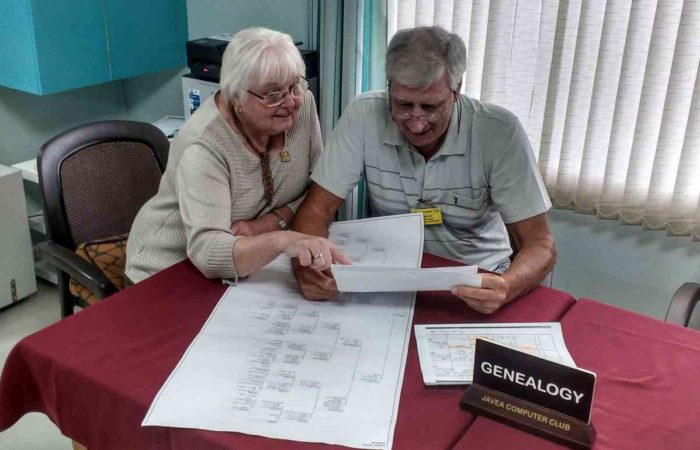 Looking at a family tree chart